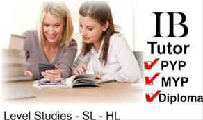 IB economics IA commentary extended essay help tutors example sample eco